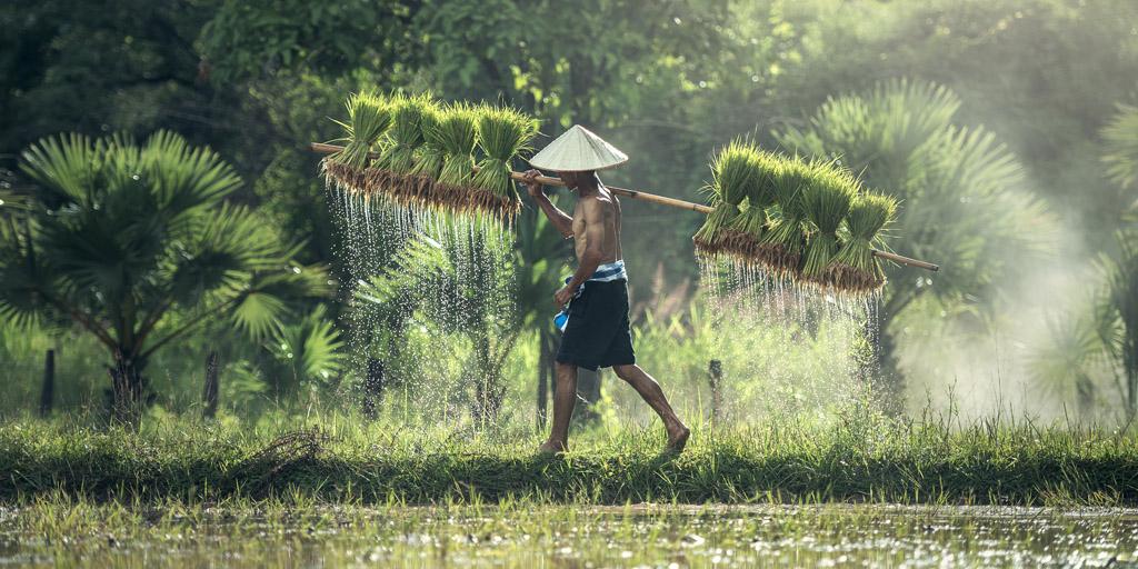 KAMBODŻA I TAJLANDIA – TROPIKALNY RAJ