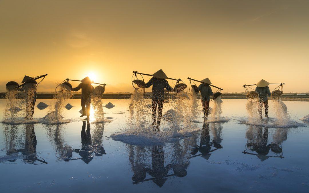 Active Business w Wietnamie